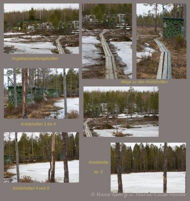 der weg zu den ansitzhütten-finnland-5_2009