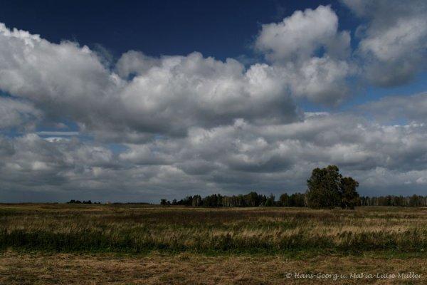 masuren-9_2009