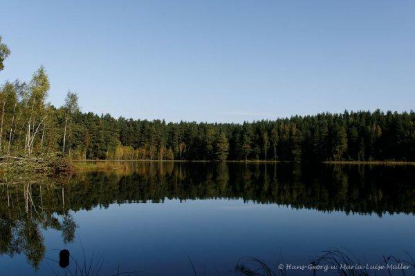 waldsee-masuren-9_2009