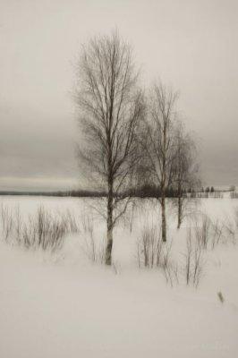 118-schweden-02_2009