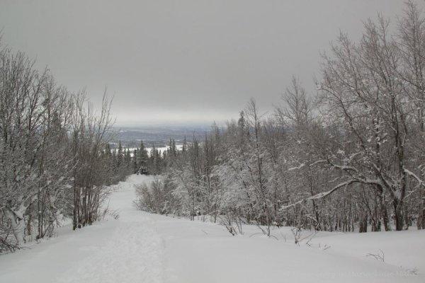120-schweden-02_2009