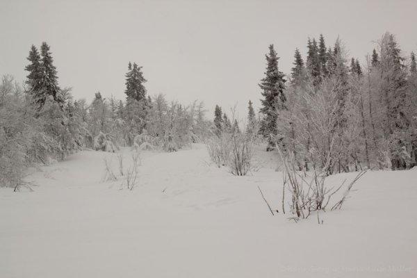 121-schweden-02_2009