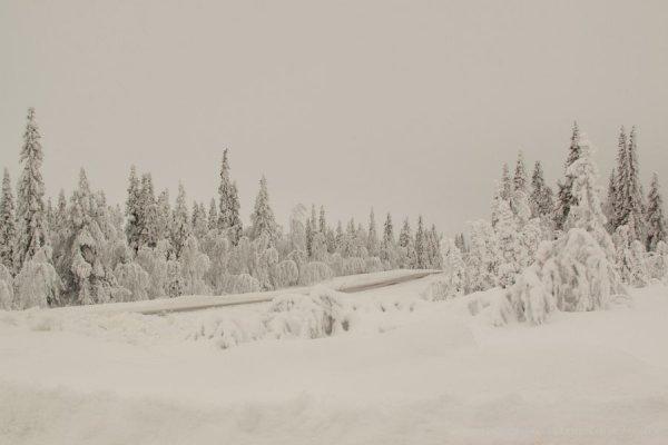 18-schweden-02_2009