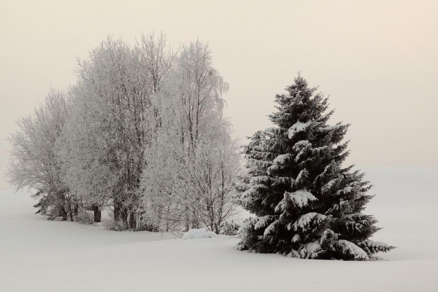53-schweden-02_2009