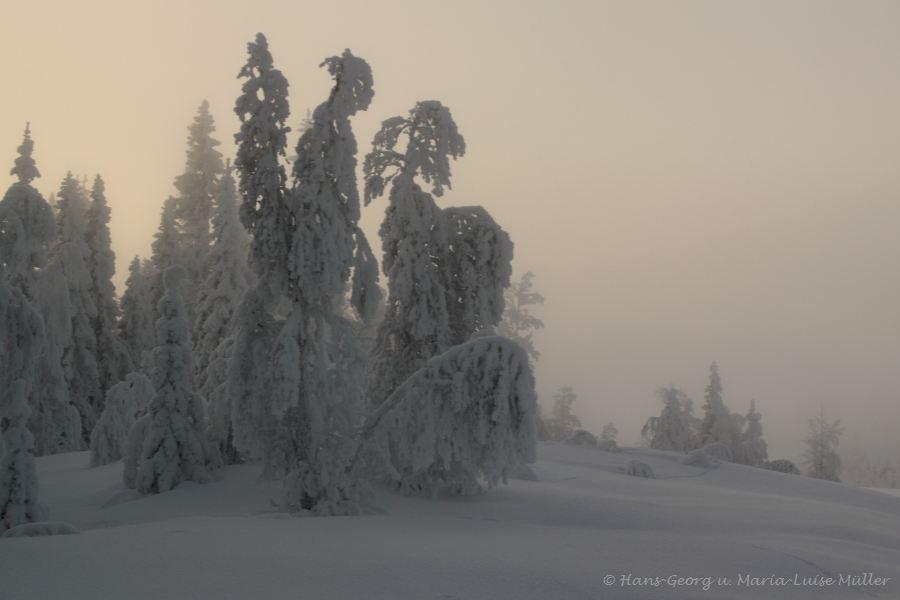54-schweden-02_2009