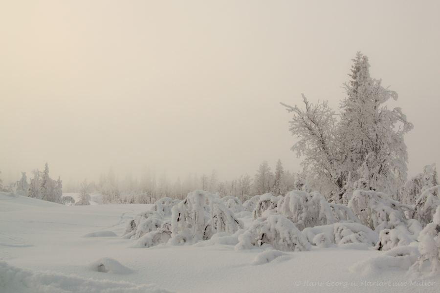 55-schweden-02_2009