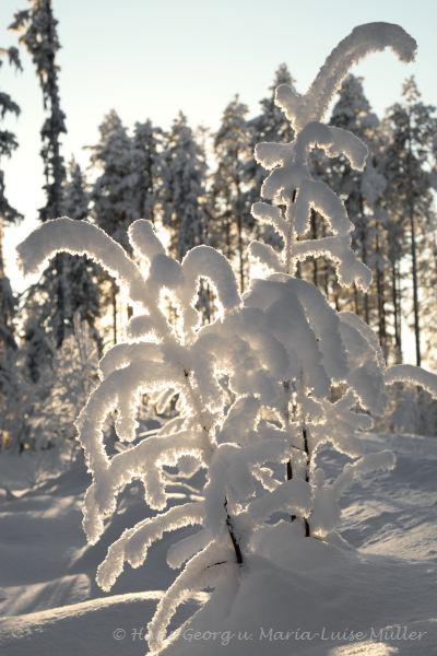 60-schweden-02_2009