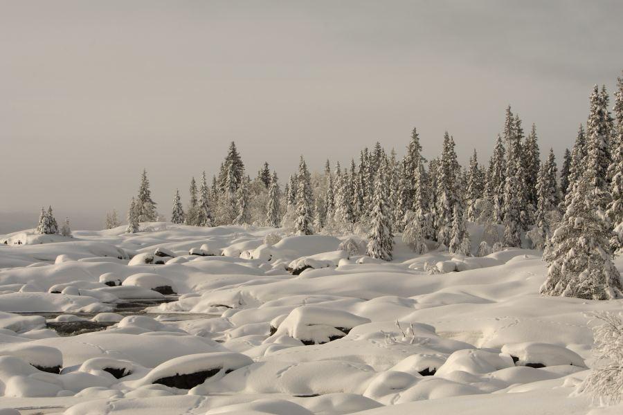 87-schweden-02_2009