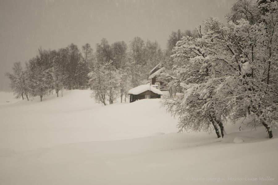 91-schweden-02_2009
