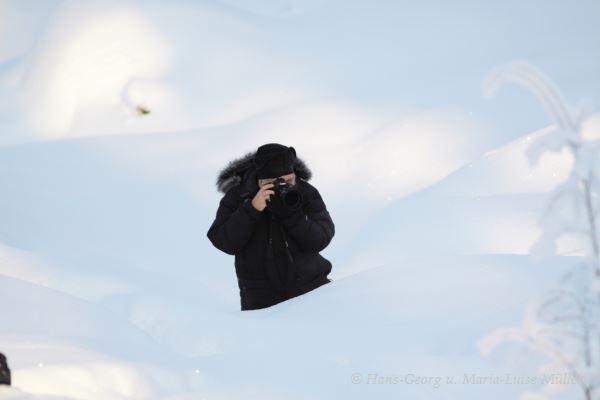 002 hans im schnee